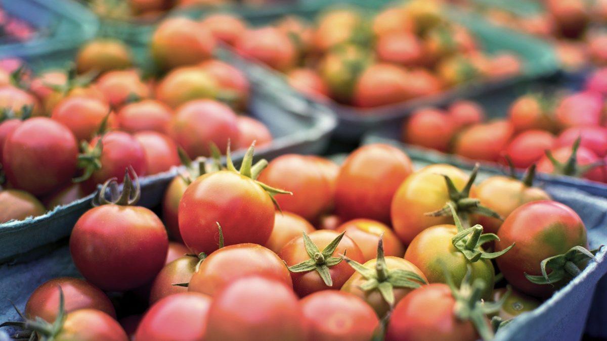 tomato fresh produce